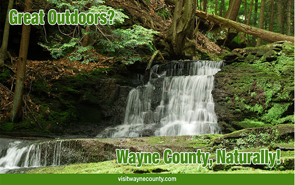 Great Outdoors?, Wayne County Naturally