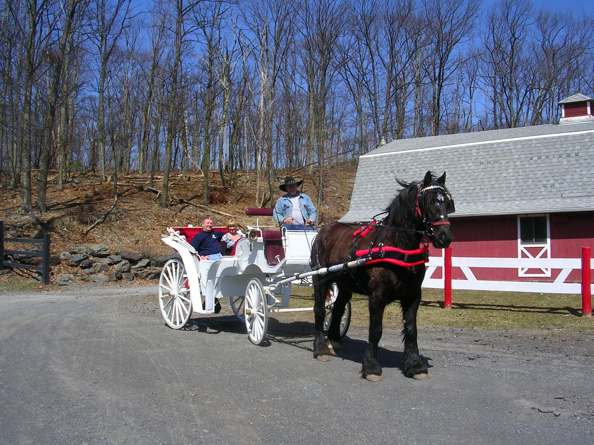 Happy Trails Riding Stables in the Pocono Mountains Hamlin western and english style saddles, trail rides, carriage, sleigh, and hay rides, boarding and horse sales